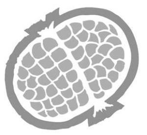 logo grigio